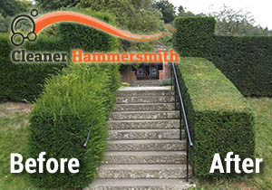Hedge Trimming Hammersmith