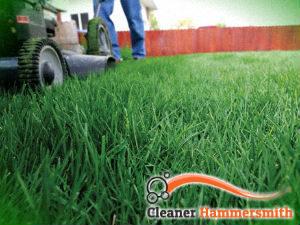 grass-cutting-services-hammersmith
